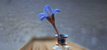 blue flower in an ink bottle